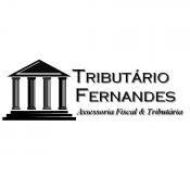 Vinicius Fernandes dos Santos