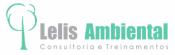 Lelis Ambiental - Consultoria e Treinamentos