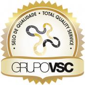 Grupo Vsc - Treinamento de Alta Performance