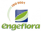 Engeflora Projetos e Consultoria Florestal